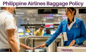 Philippine Airlines Baggage Policy Find Baggage Allowance & Travel With Your Pets