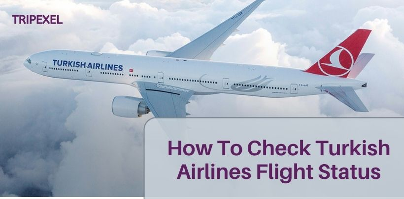 How To Check Turkish Airlines Flight Status