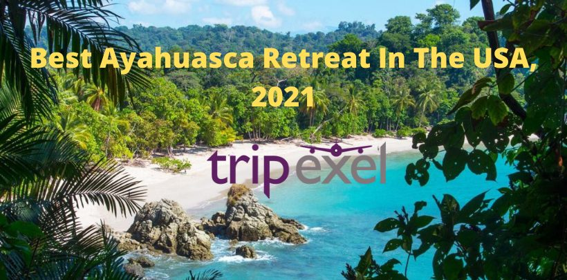Best Ayahuasca Retreat In The USA, 2021